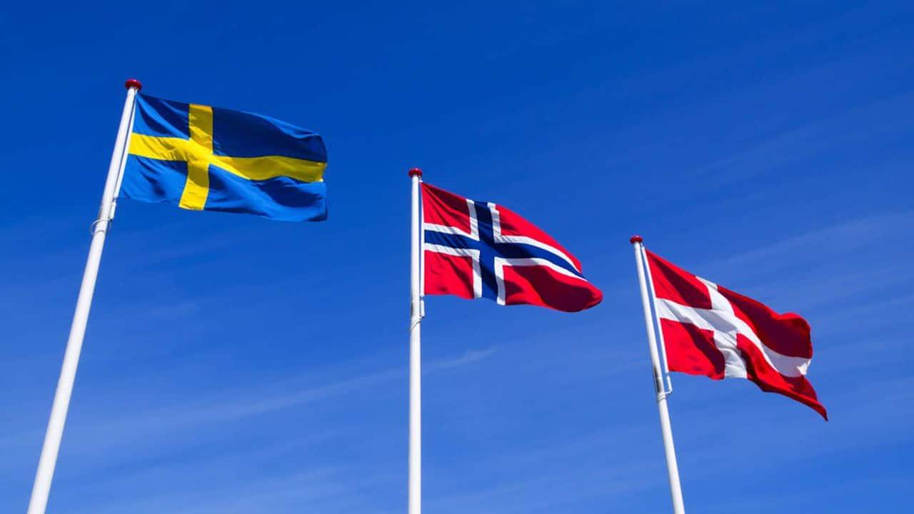 modèle scandinave sport
